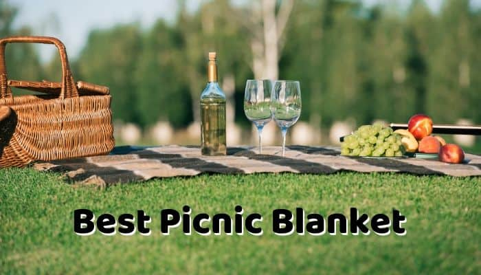 Best Picnic Blanket