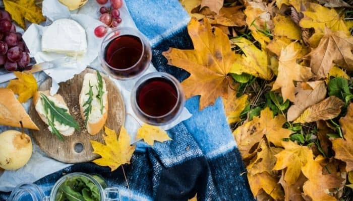 Perfect Fall Picnic Ideas