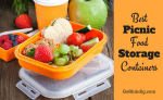 Best Picnic Food Storage Containers