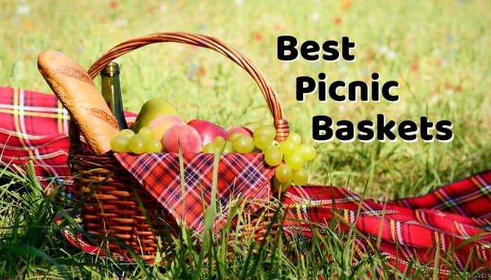 Best Picnic Basket
