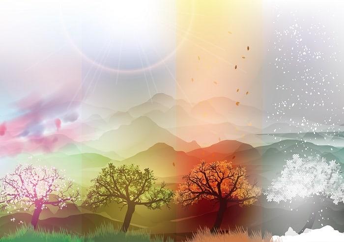 Four seasons picnic