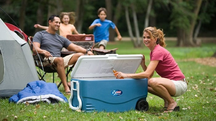 Big picnic cooler