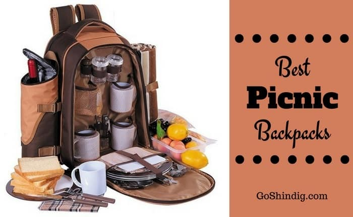 Best Picnic Backpack