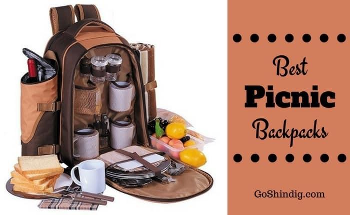 Best Picnic Backpack