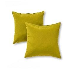 Green Outdoor Pillow