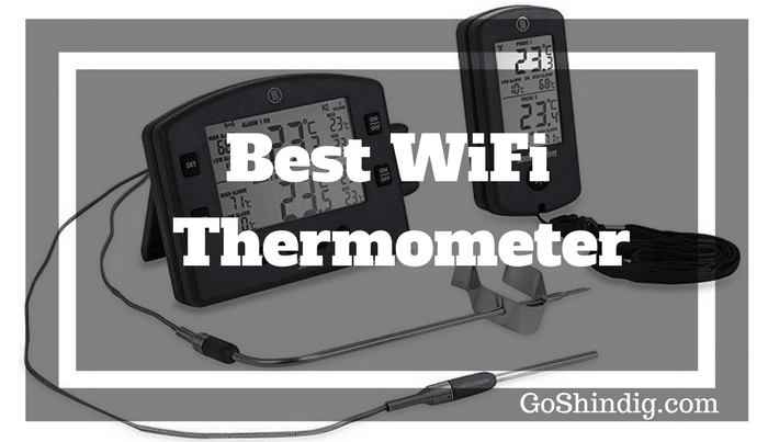 Best WiFi Thermometer