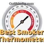 Best Smoker Thermometer