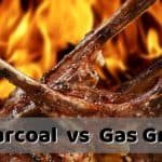 Charcoal vs Gas Grills - Buyers Guide For Which is Best