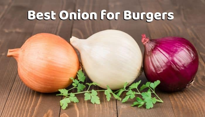Best Onion for Burgers